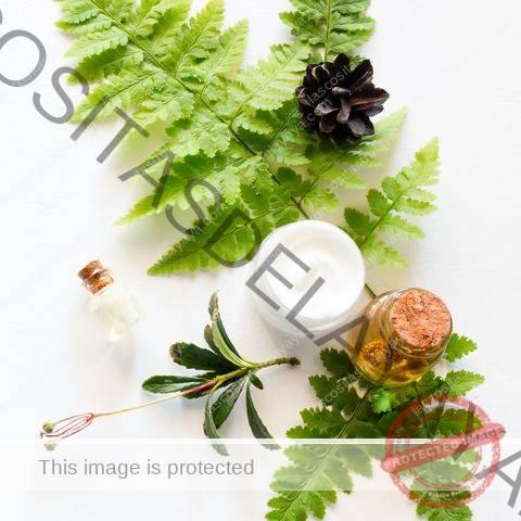 cosmética natural, una hoja de helecho y un cono