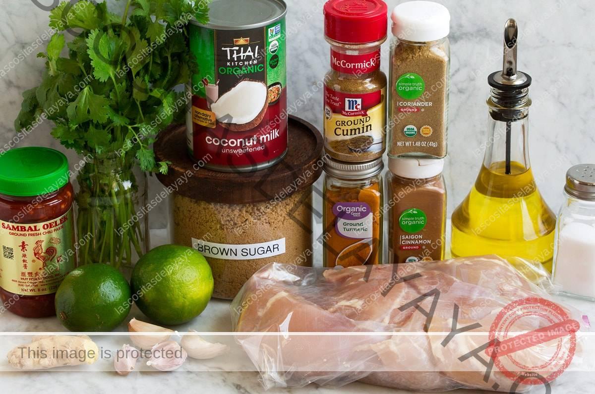 Imagem de ingredientes da marinada e frango para coxas de frango grelhado de coco tailandês.