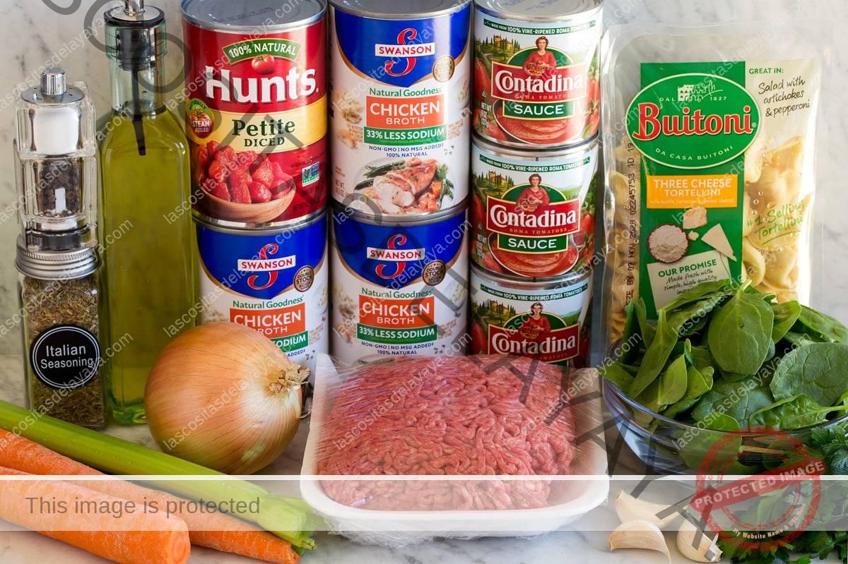 Imagen de los ingredientes utilizados para hacer la sopa de tortellini.  Incluye tortellini de queso, carne molida, tomate, salsa de tomate, apio, zanahoria, cebolla, ajo, espinaca, perejil, aceite de oliva, sal y pimienta.
