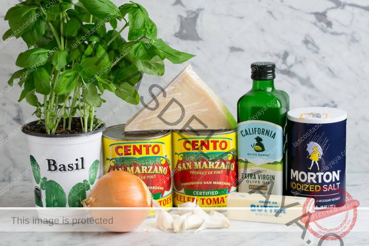 Ingredientes necessários para fazer o molho marinara mostrados aqui, incluindo tomates San Marzano enlatados, azeite de oliva extra virgem, alho, manteiga, parmesão, manjericão, cebola e sal.