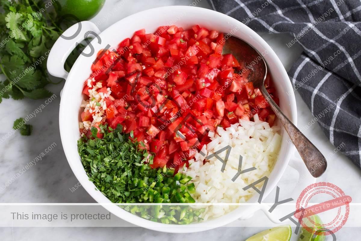 Mostrando cómo hacer pico de gallo, mezclando en un bol tomate picado, cebolla, jalapeño, cilantro, ajo, limón y sal.