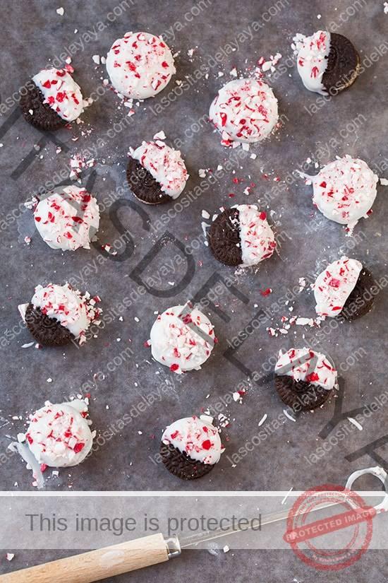 Mini Oreos bañadas en chocolate blanco con menta |  Cocina con clase