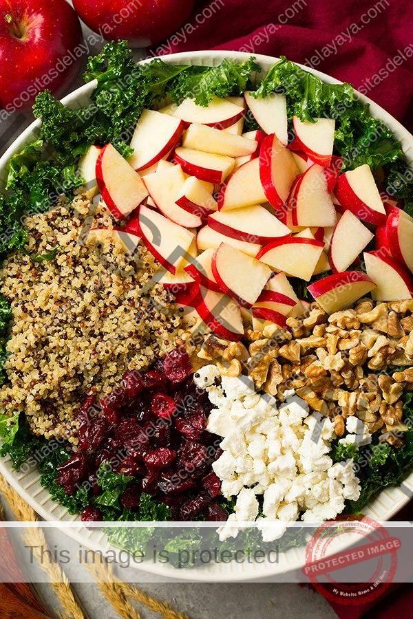 Ingredientes de la ensalada de col en una ensaladera antes de jugar.