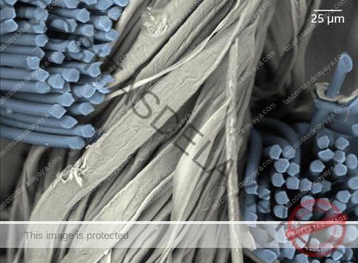Imagen de microscopio de una tela de mezcla de algodón y poliéster