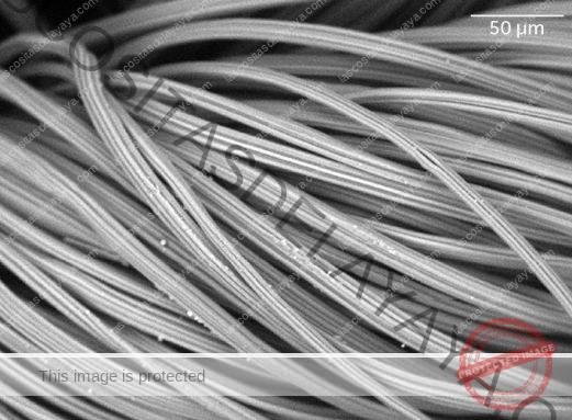 Imagen de microscopio de tela de rayón