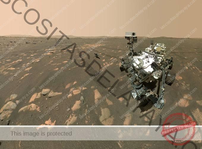 Imagen selfie de Perseverance rover con ingenio helicóptero en el fondo
