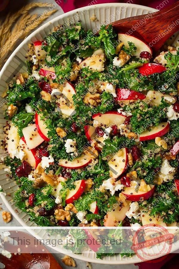Ensalada de col con manzanas gala, quinoa, nueces, queso de cabra y ar谩ndanos en un cuenco de cer谩mica.  Se condimenta con vinagreta de lim贸n.