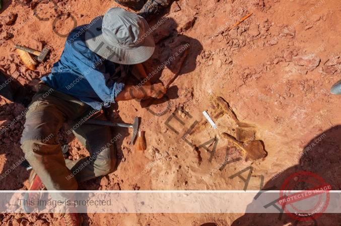 paleontólogo sentado sobre suelo rocoso