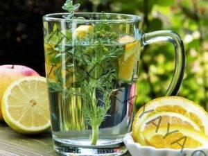 Homeopatia y plantas medicinales